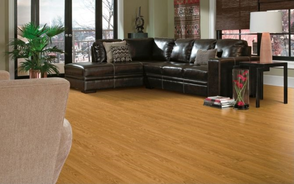steam-cleaning-destroys-hardwood-and-laminate.jpg