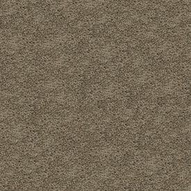 Gentle Essence Smartstrand Silk Carpet - Color: Herb Garden by Mohawk Flooring