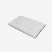 Promise Soft Thermo Memory Foam Pillow