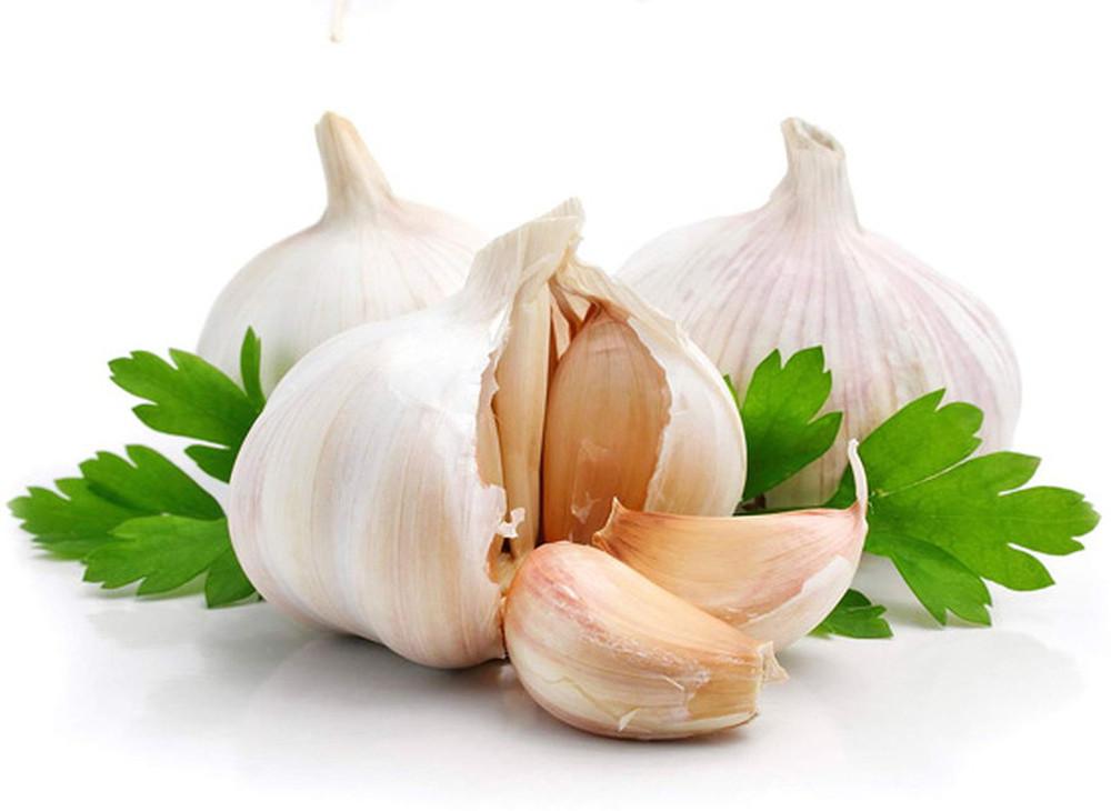Early California Garlic 3 Bulbs - Very Productive/Sweet