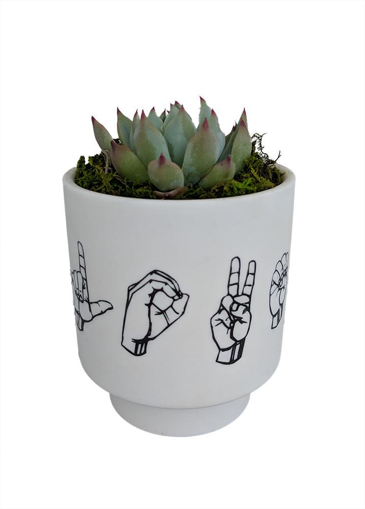 L.O.V.E. Spelled - Sign Language Planter with Live Plant - ASL - Live Trends