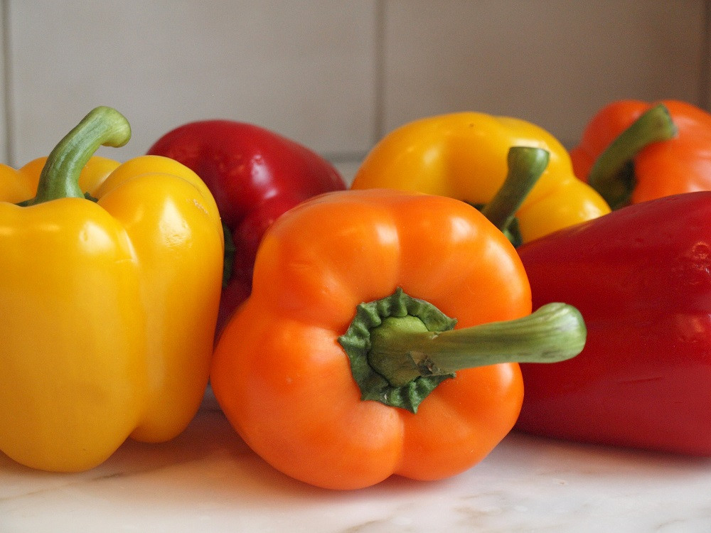 """Tasty Colorbell Pepper Plant - 2.5"""" Pot - Green/Yellow/Red/Orange"""