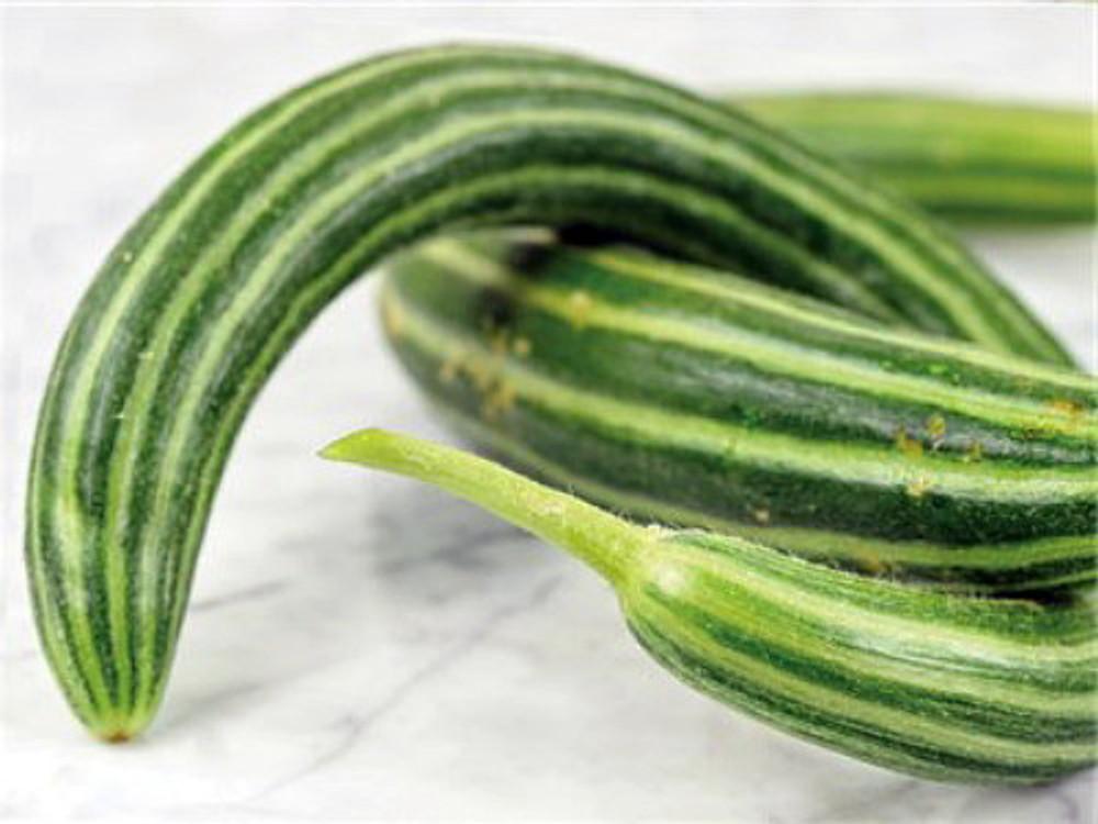 Metki Oriental Serpent Snake Melon 5 Seeds - Veggies