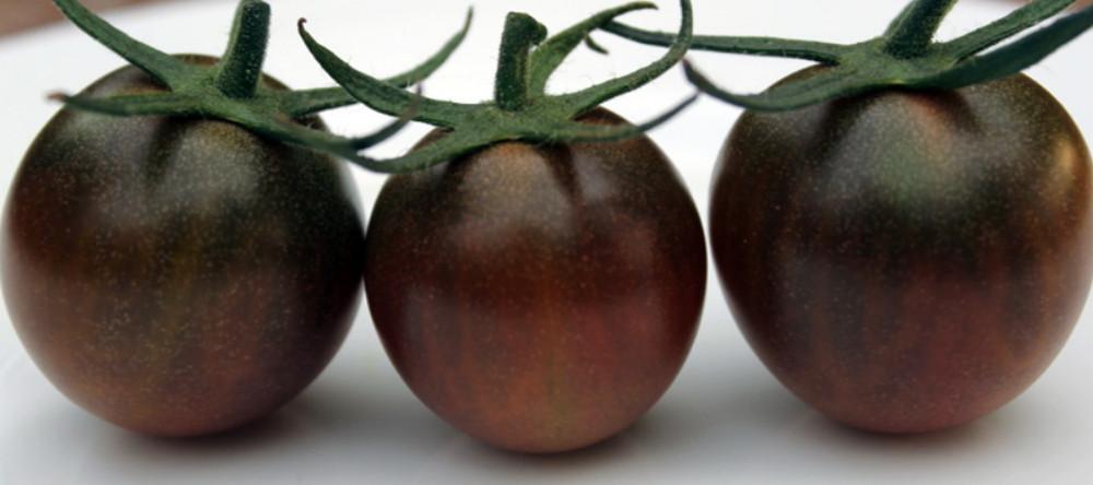 Black Cherry Tomato 25 Seeds - Sweet & Juicy