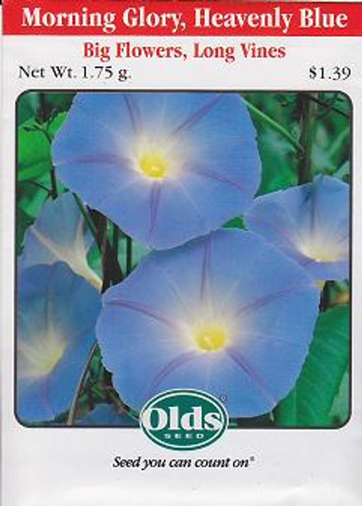 Heavenly Blue Morning Glory - 40 Seeds, 1.75g