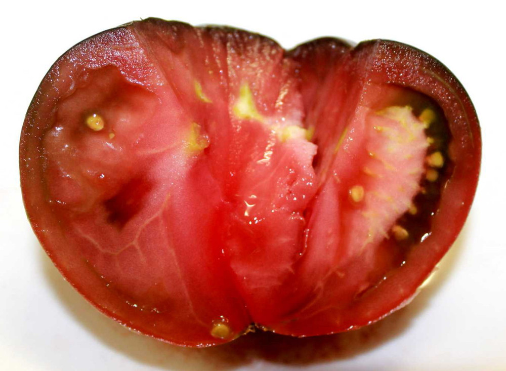 Black Sea Man Tomato 10 Seeds - Heirloom