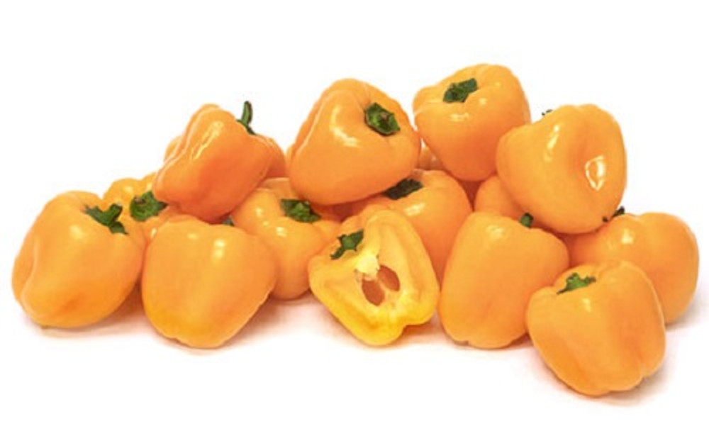 Baby Yellow Pepper - 20 Seeds - Miniature Bell