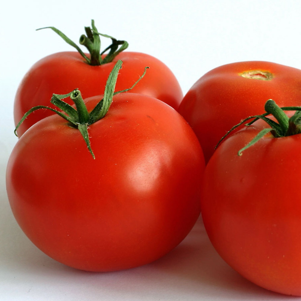Cal Ace Tomato - 20 Seeds