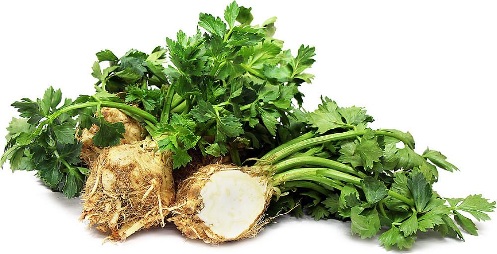 Root Celery 100 Seeds -Celeriac-Rarely Grown - Heirloom