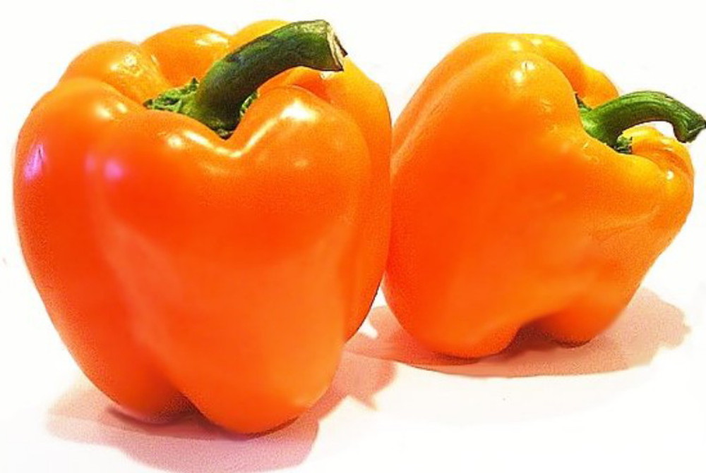 Ariene Orange Dutch Pepper - 10 Seeds