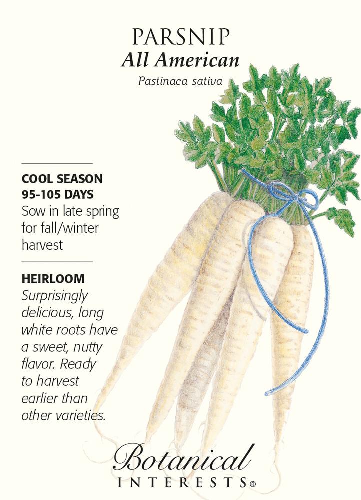 All American Parsnip Seeds - 1 gram - Heirloom