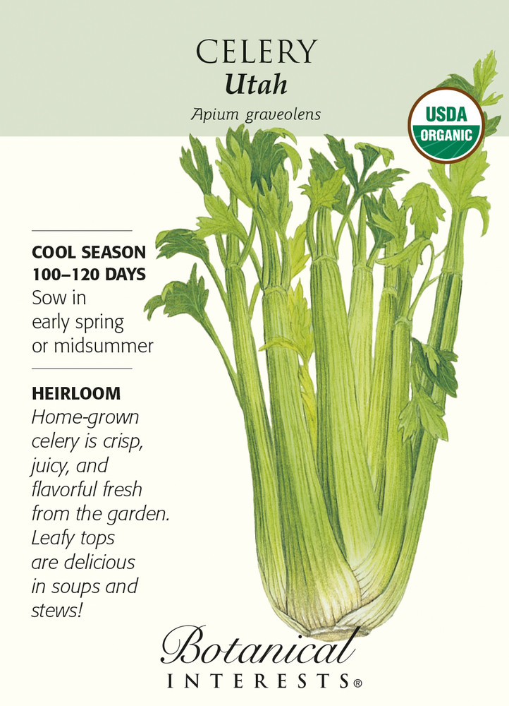Organic Utah Celery Seeds - 350mg - Botanical Interests