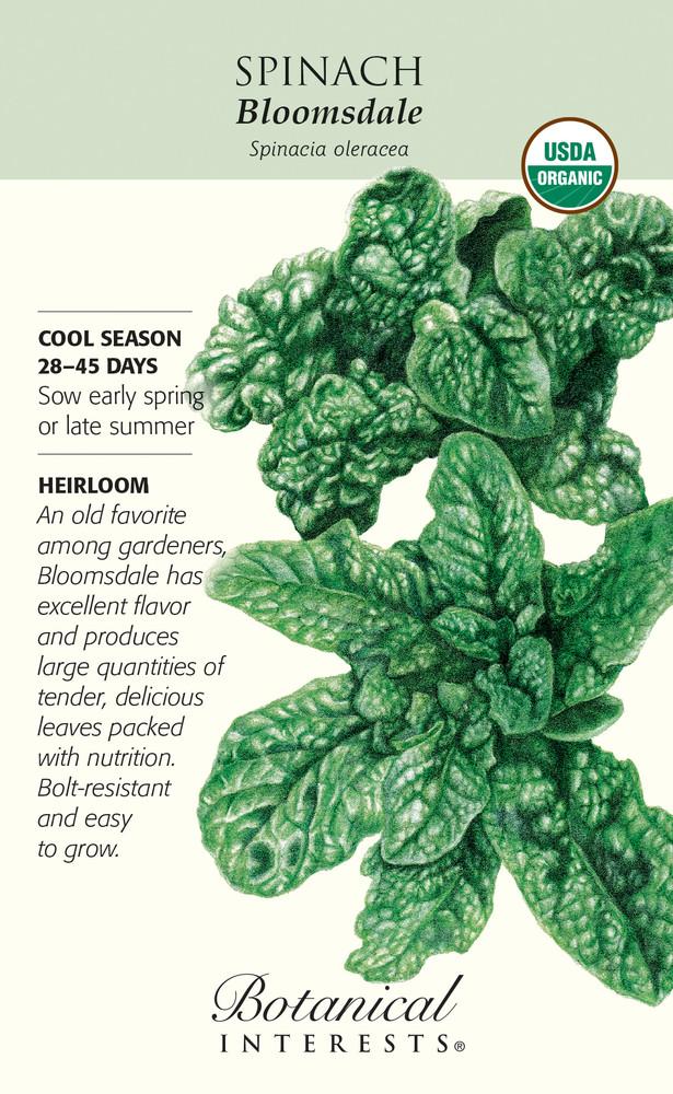 Bloomsdale Spinach Seeds - 10 grams - Heirloom