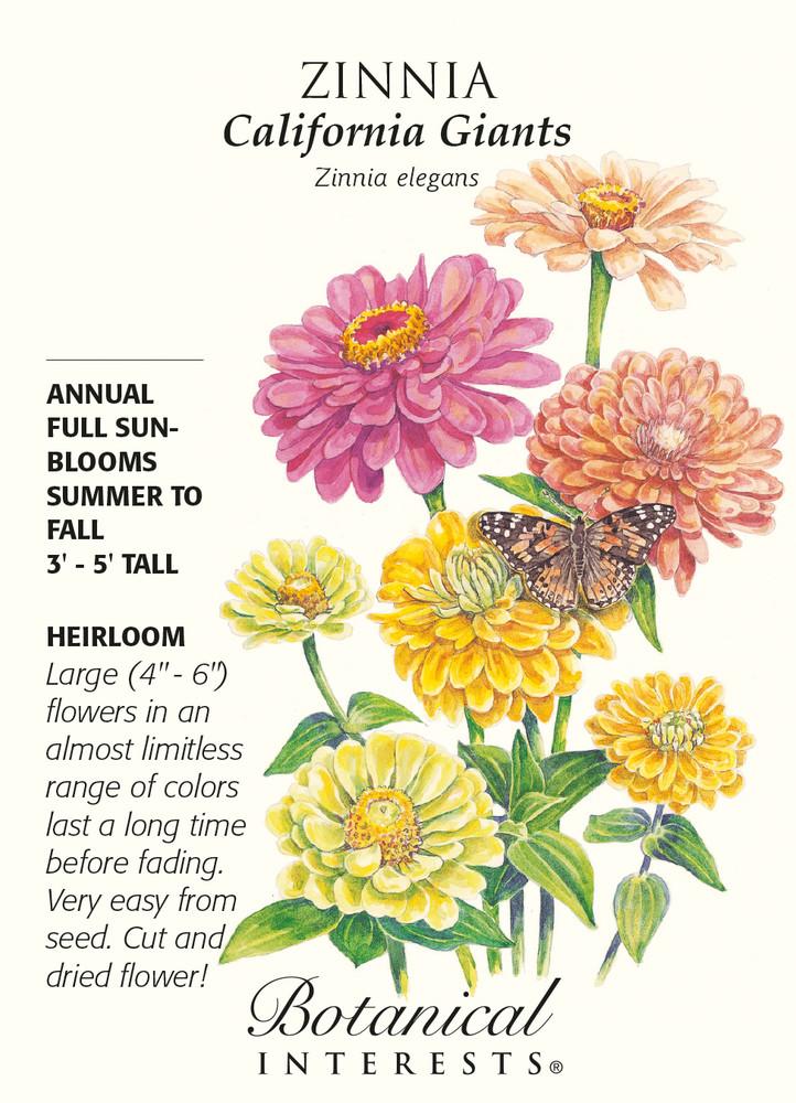 California Giants Zinnia Seeds - 1.5 grams