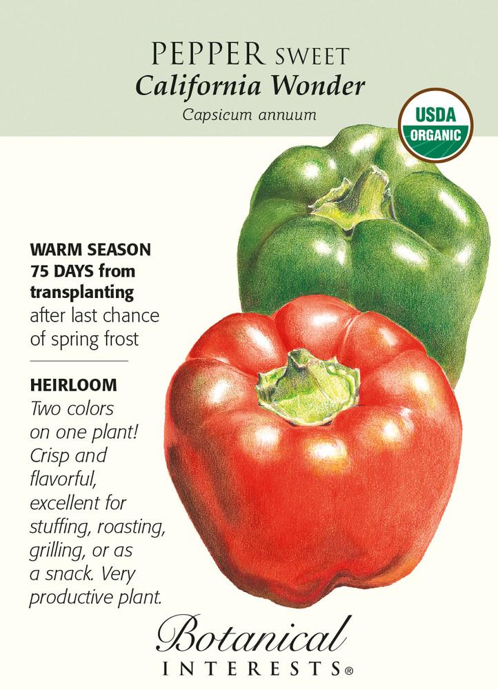 California Wonder Sweet Pepper Seeds - 300 mg - Organic