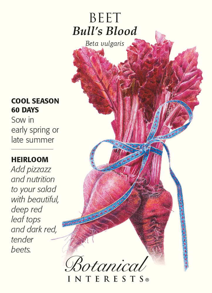 Bull's Blood Beets Heirloom Seeds - 3 grams
