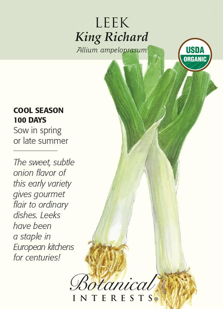 Organic King Richard Leek Seeds - 750 mg
