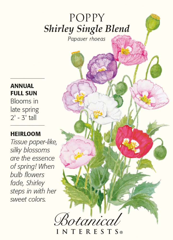Shirley Single Blend Poppy Seeds - .50 grams
