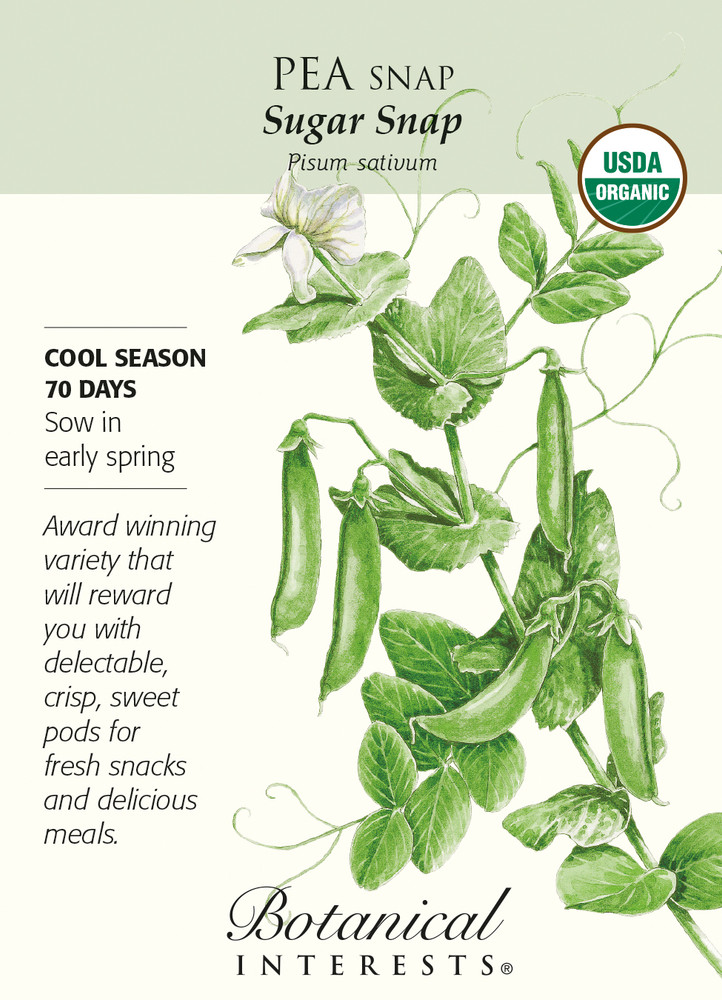 Organic Sugar Snap Pea Seeds - 15 grams