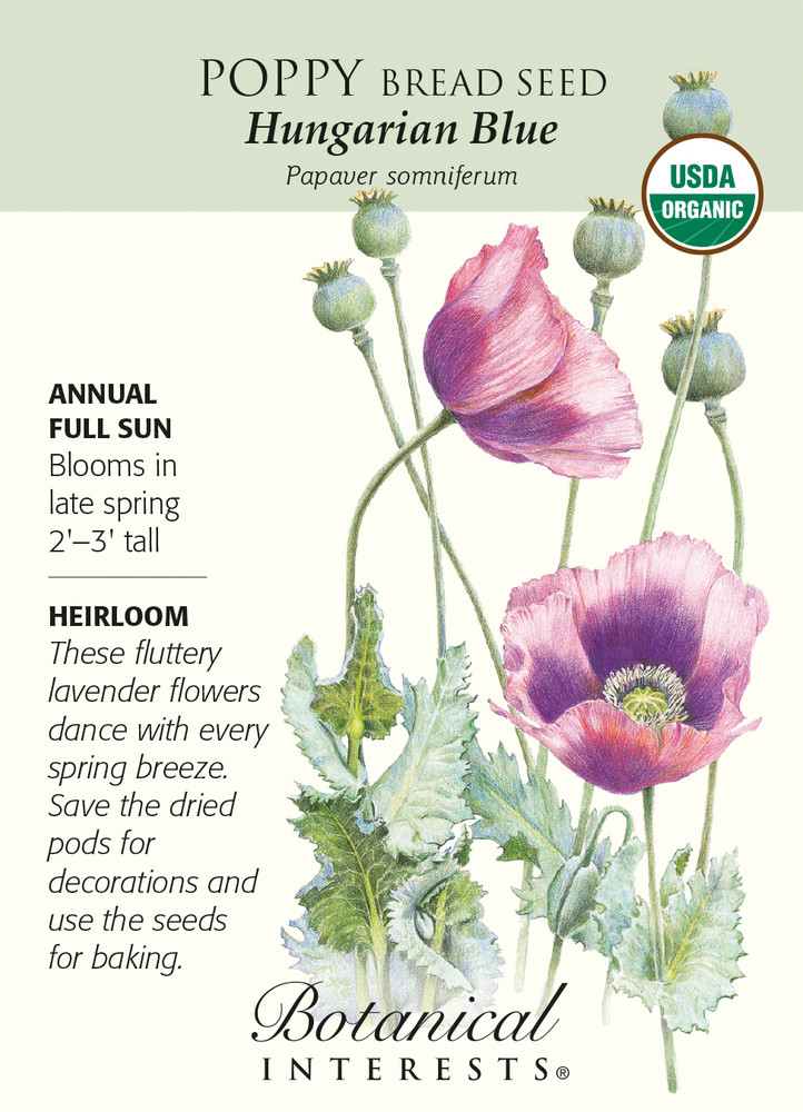 Hungarian Blue Poppy Bread Seed - 250 mg - Organic
