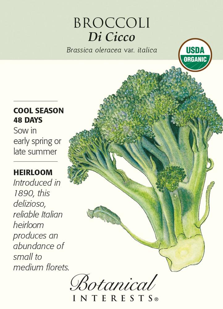 Di Cicco Broccoli Seeds - 2 grams - Certified Organic