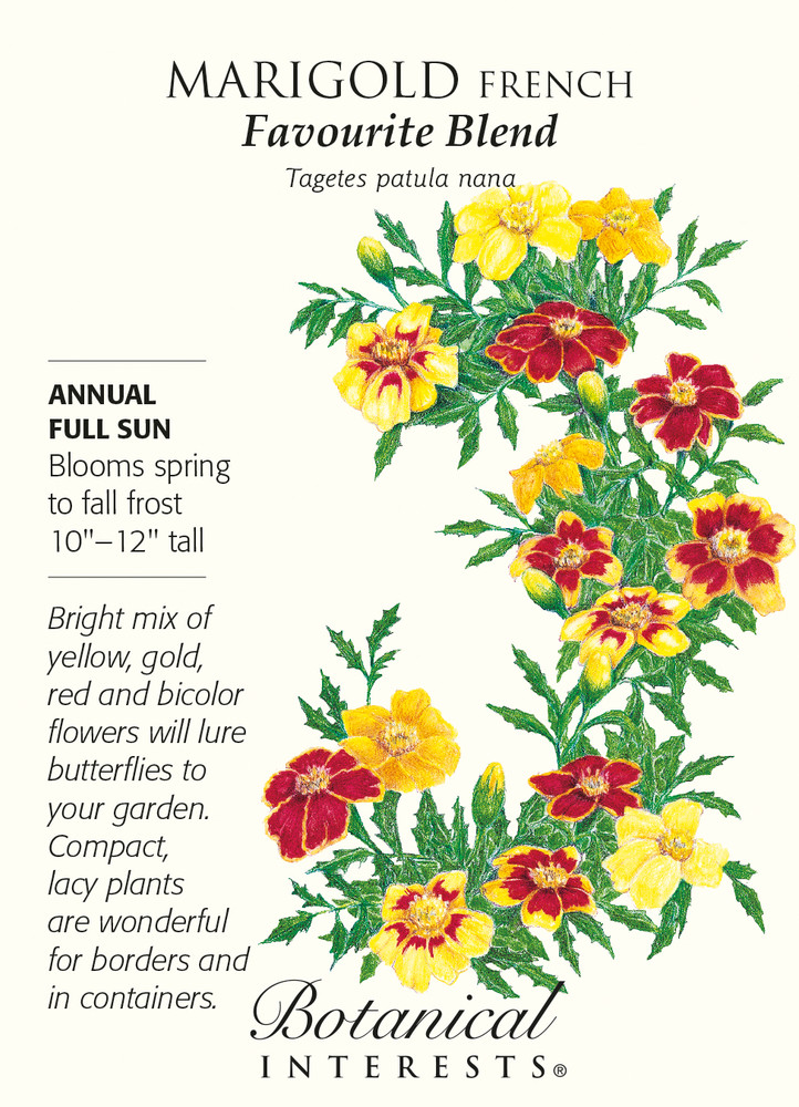 Favourite Blend French Marigold Seeds - 500 mg