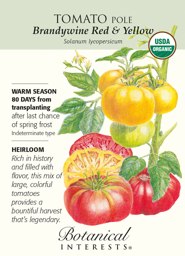 Brandywine Red & Yellow Pole Tomato Seeds - 200 mg