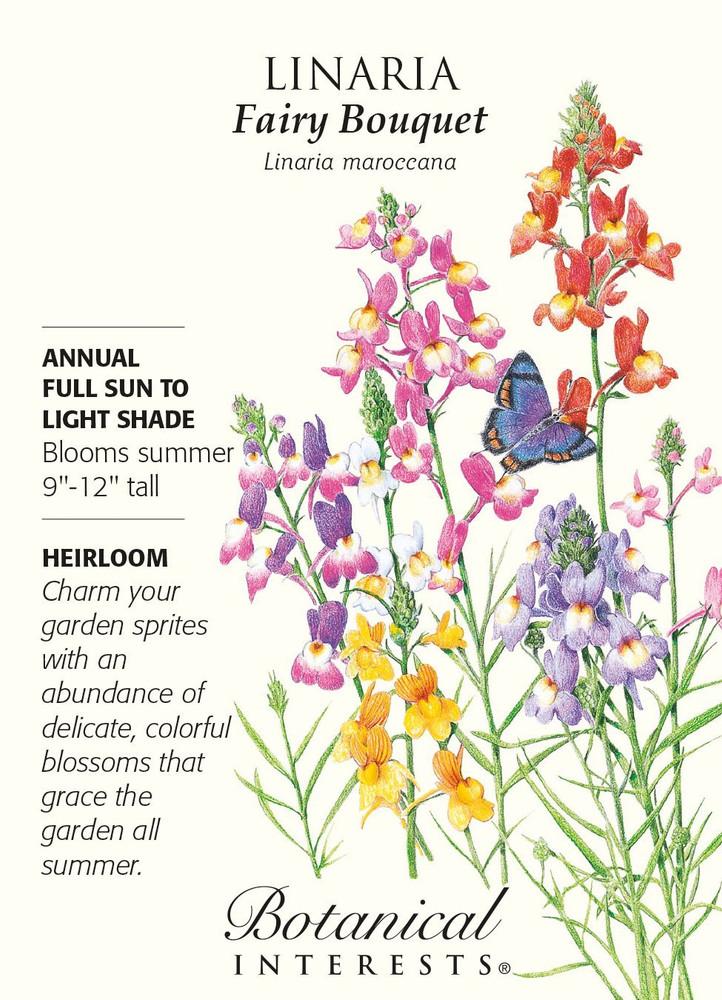 Fairy Bouquet Linaria Seeds - 200 mg