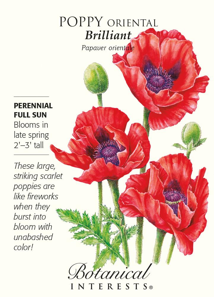 Brilliant Oriental Poppy Seeds - 200 mg
