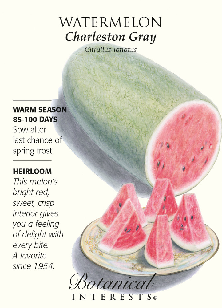 Charleston Gray Watermelon Seeds - 2 grams