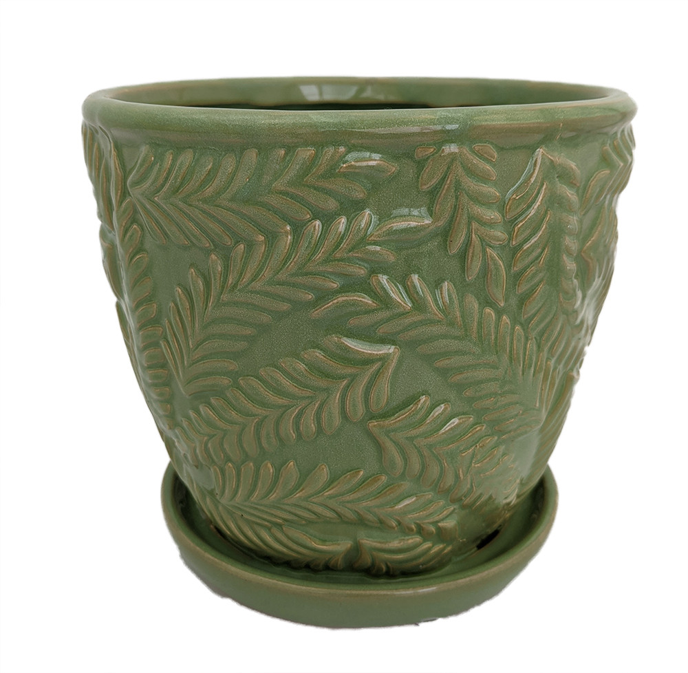 """Beach Fern Ceramic Pot with Attached Saucer - Meadow Green - 5"""" x 4.75"""""""