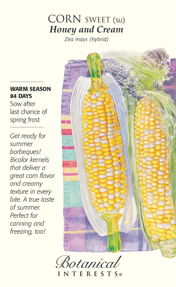 Honey and Cream Sweet Corn Seeds - 28 grams