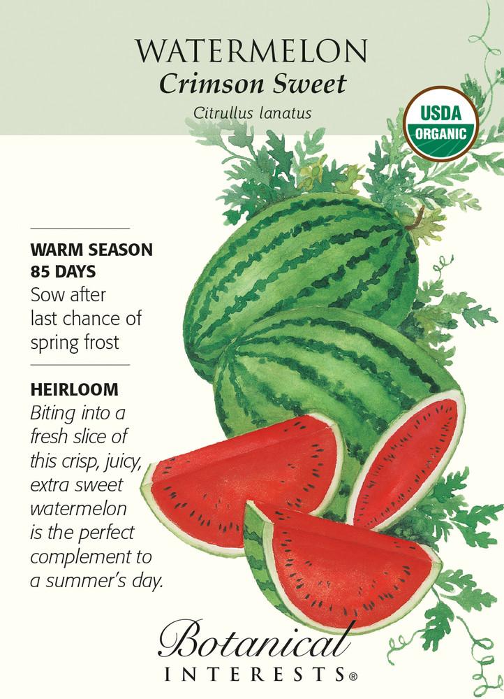 Crimson Sweet Watermelon Seeds - 1.5 grams - Organic