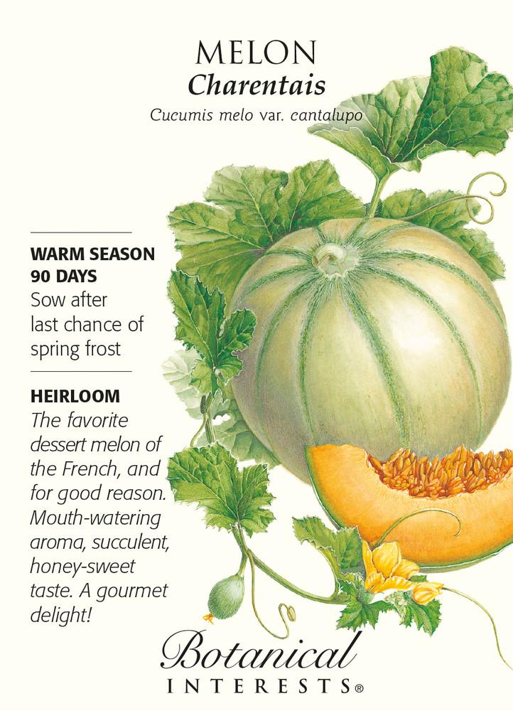Charentais Melon Seeds - 1 gram