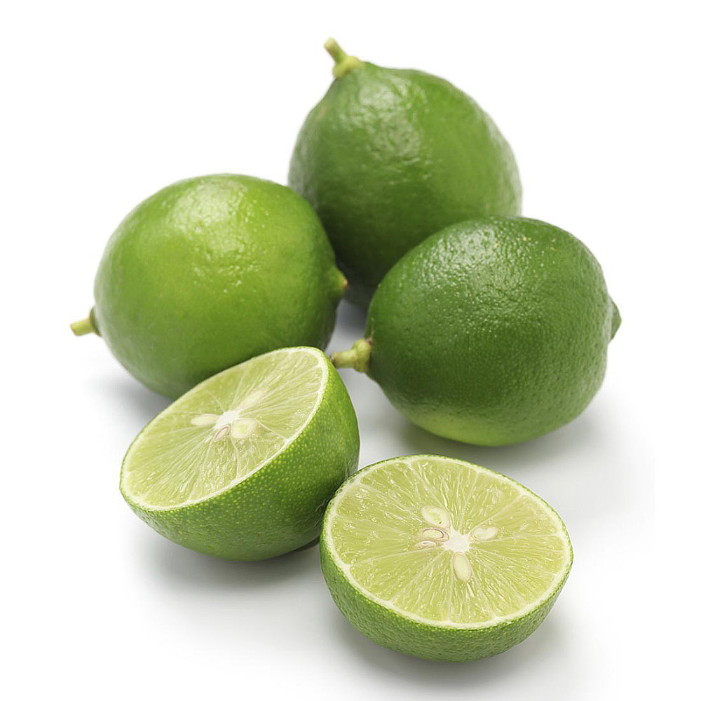 """Thornless Key Lime Tree - 5"""" Pot -Fruiting Size-Key Lime Pie"""