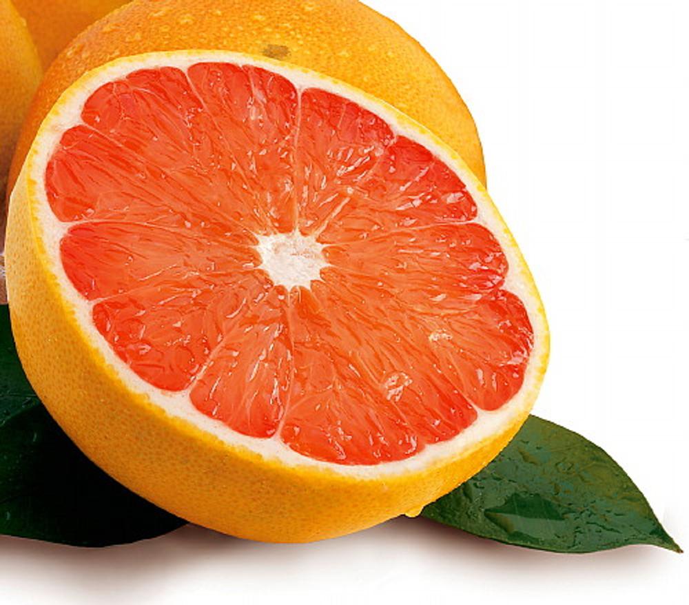 "Marsh Grapefruit Tree - 4x12"" Grower Pot - NO SHIPPING,TX, FL, AZ, CA, LA, HI"