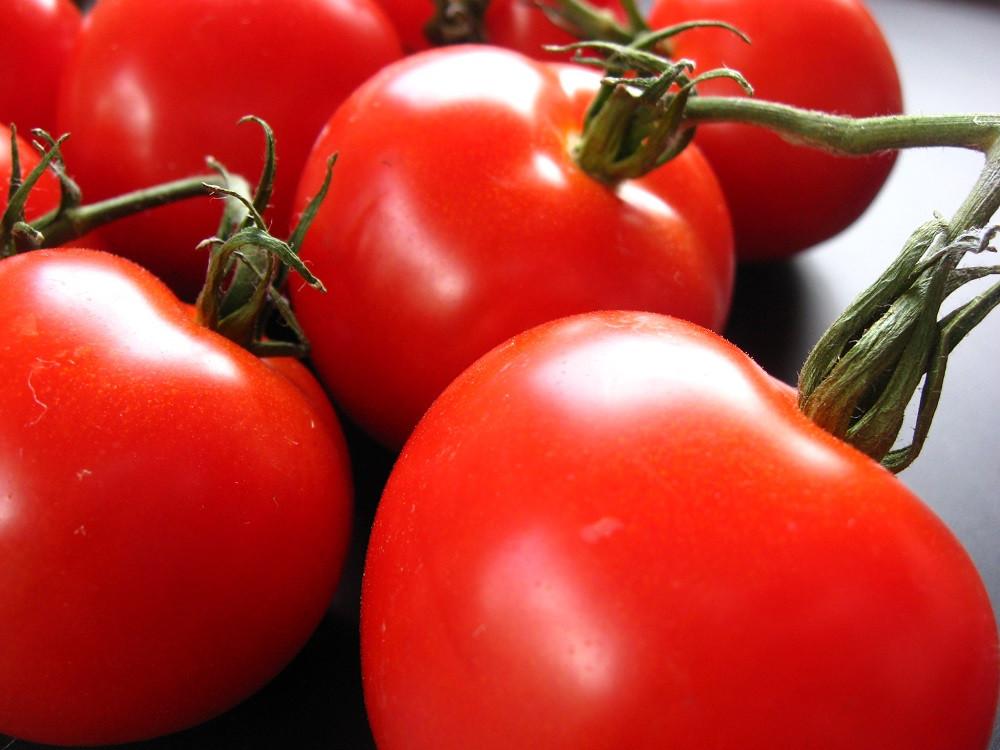 "Creole Tomato - Louisiana Heirloom - Some Like It Hot - 2.5"" Pot"