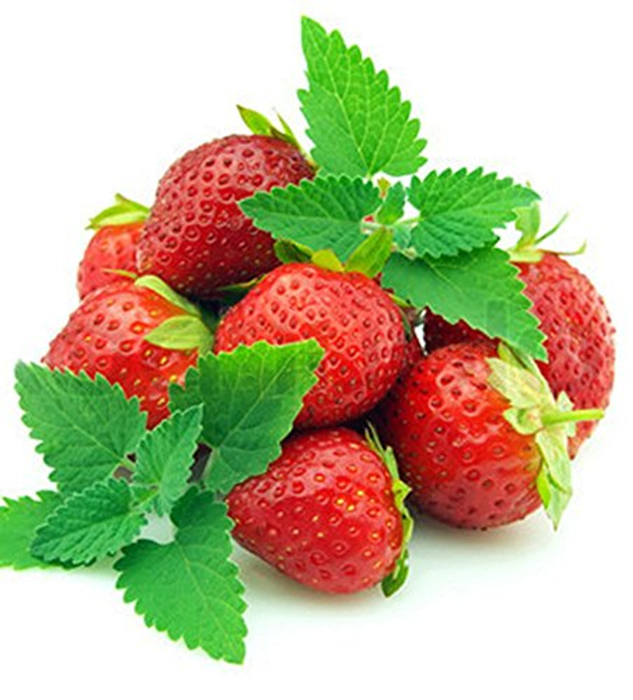 """Strawberry Mint - Grow Indoors or Out - Live Plant - 3"""" Pot"""