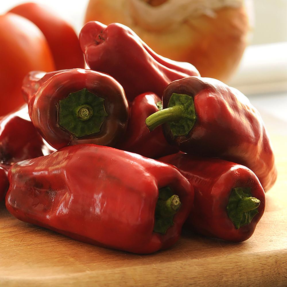 "Burpee BOOST Sweet Heat Pepper Plant - Mildly Spicy Flavor - 4"" Pot"