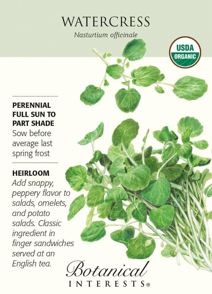 Organic Watercress Seeds - 200 mg - Nasturtium officinale