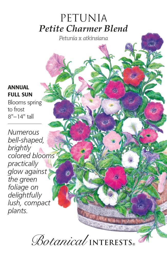 Petite Charmer Blend Petunia Seeds - Botanical Interests - 50Mg