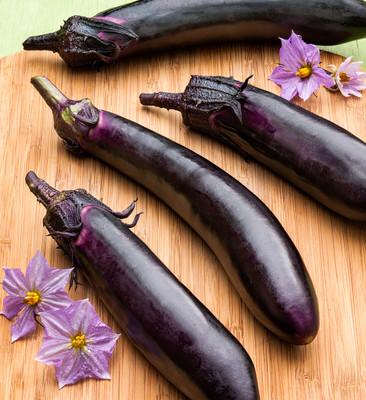 "Classic Slender Eggplant - 3.5"" Pot"