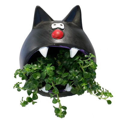 "Cat Howler Halloween Indoor Garden Planter - 5"" Ceramic Vase/Live Plant"