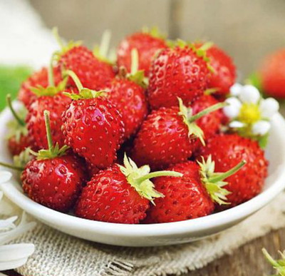 """Everbearing Alpine Mignonette French Strawberry - Fragaria - 4 Plants /2.5"""" Pots"""
