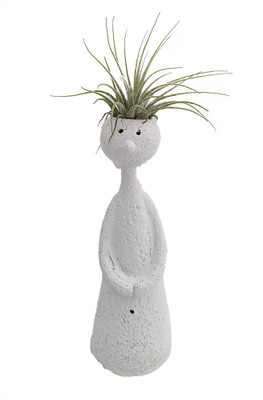 "BOLD Thinker Ceramic Vase/Living Air Plant - White - 2"" x 2"" x 7"" Live Trends"