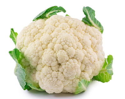 "Early Snowball Cauliflower Plant - 2.5"" Pot - Easy to Grow!"