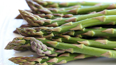 10 Asparagus Roots Jersey Knight