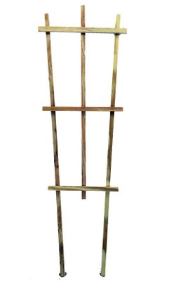 "Wood Trellis - Indoors or Out - 24"" - Tapered Style"
