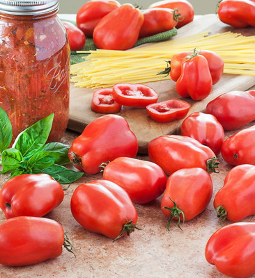 San Marzano Tomato 25 Seeds - Great for Sauce!