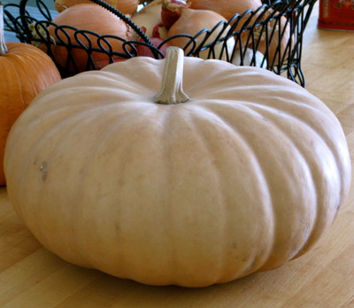 Long Island Cheese Pumpkin 20 Seeds